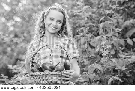 Healthy Homegrown Food Concept. Eat Healthy. Summer Harvest Concept. Girl Cute Smiling Child Living