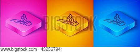 Isometric Line Plant In Pot Icon Isolated On Pink And Orange, Blue Background. Plant Growing In A Po