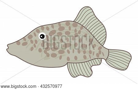 Isolated Cute Tropical Colourful Fish With Spots. Vector Cartoon Fish. Fish Vector Illustration