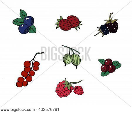 Vector Set Of Ripe Berries In The Style Of Doodles. Strawberries, Blueberries, Raspberries, Cranberr