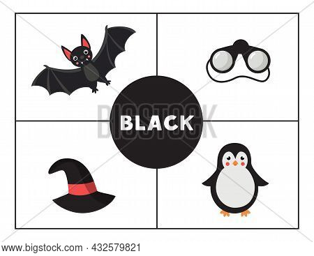Learning Basic Primary Colors For Children. Black Color.