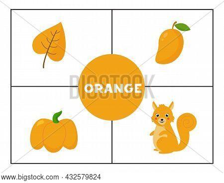 Learning Basic Primary Colors For Children. Orange.
