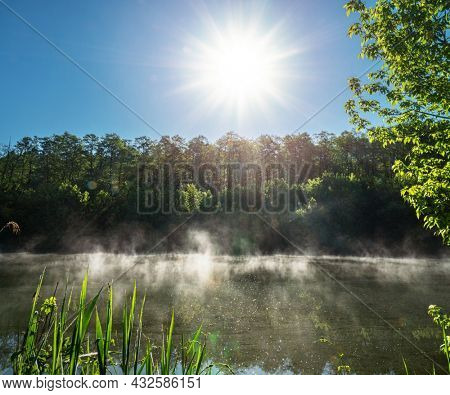 Beautiful river bank in the sun rays and morning fog in the summer morning. Amazing beauty of summer nature.