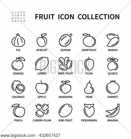 Fruits Simple Set Of Healthy Food. Isolated Icon Collection On White Background. Fruit Icon Symbol V