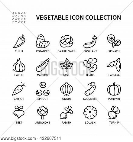 Vegetables, Simple Set Of Vector Linear Icons. Collection Of Vegetables Icons. Vector Symbol Set Of