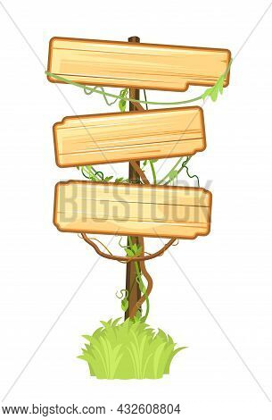 Wooden Sign In The Jungle. Three Meanings. Empty Board With Place For Text. With Wood Texture. Stand