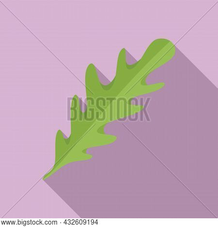 Rucolla Condiment Icon Flat Vector. Salad Arugula. Leaf Plant