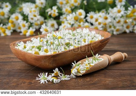 Wooden Bowl Of Plucked Daisy Flowers, Wooden Scoop Of Chamomile Buds And Bunch Of Daisy Flowers On B