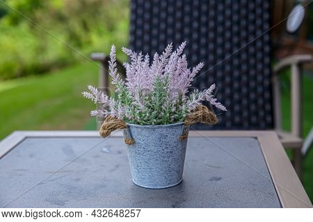 Mini Clay Pot Of Flowering Echeveria Succulent House Plant On Wooden Table Background.green Succulen