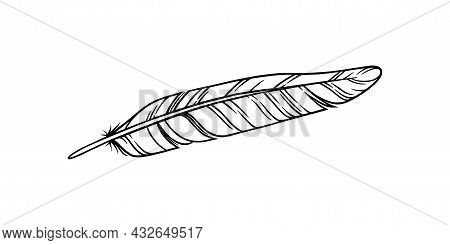 Bird Feather For A Quill. Sketch Feather Illustration For A Tattoo Design. Vector Illustration Isola