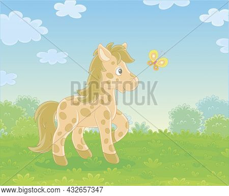 Spotted Cute Little Pony Playing With A Merry Flittering Butterfly On Green Grass Of A Pretty Summer