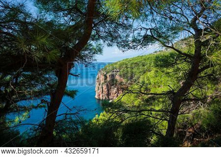 Picturesque cliff and deep blue water of Mediterranean sea photo framed in pine trees, Nature of Turkey