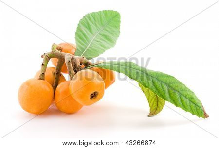 Loquat fruit with leaves isolated on white background