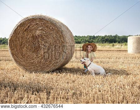 Little Girl And Dog Having Fun In A Wheat Field On A Summer Day. Child Playing At Hay Bale Field Dur