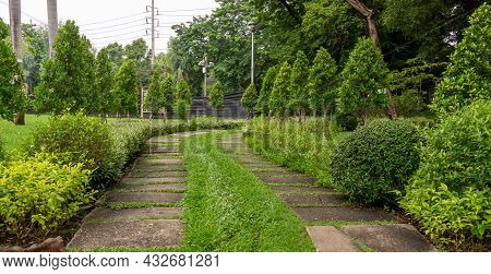 Green Grass Lawn In Garden With Random Pattern Of Concrete Stepping Pavement Walkway, Flowering Plan