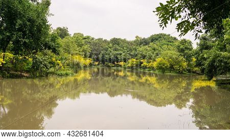 A Small Clean Lake In Public Park, Greenery And Yellow Leaves Trees, Shrub And Bush, Green Grass Law