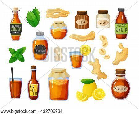 Kombucha Set. Cartoon Tea Mushroom Drink. Various Bottles With Ginger And Sugar. Mint Leaves And Lem