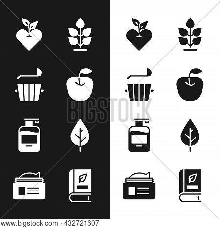 Set Apple, Sauna Bucket And Ladle, Heart, Plant, Bottle Of Liquid Soap, Leaf, Medical Book And Ointm