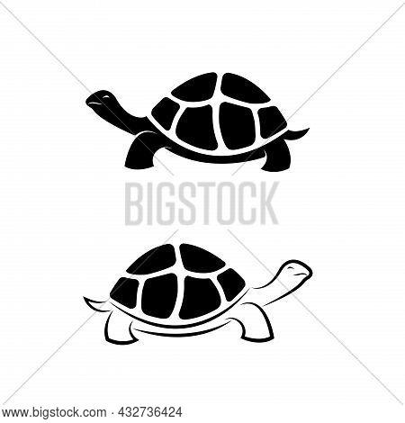 Vector Of Land Tortoise Design On White Background. Easy Editable Layered Vector Illustration. Wild