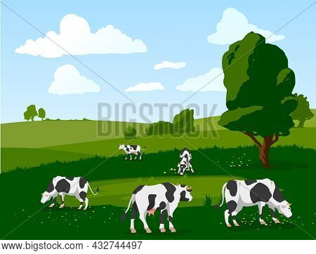 Vector Banner With Herd Of Spotted Cows Grazing On Green Meadow.