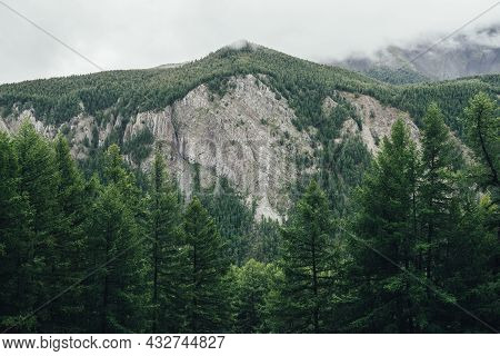 Atmospheric Landscape With High Mountain Wall With Forest Pinnacle In Gray Cloudy Sky. Awesome Scene