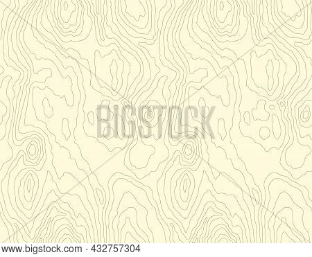 Seamless Wooden Pattern. Wood Grain Texture. Dense Lines. Abstract White Background. Vector Illustra