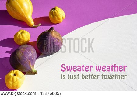 Card With Autumn Colors. Purple Fig, Yellow Quince Fruits And Pumpkin On Vibrant Fuchsia, Magenta An