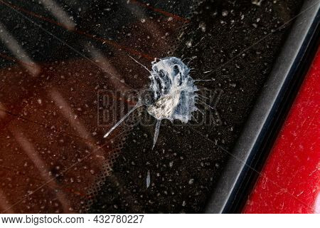 Bird Shit, Drop Of Bird Stain On Red Car Surface, Dirty Waste Of Birds Dropping Splatter, Dirty Stai