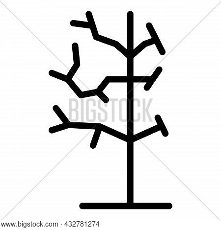 Dry Tree Icon Outline Vector. Forest Branch. Plant Trunk