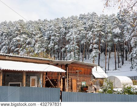 Russian Village Chemal In The Snow. Wooden Buildings Stand Next To A Coniferous Snowy Forest. Chemal