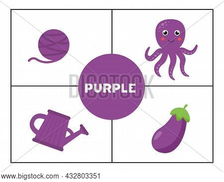 Basic Colors For Children. Flashcards For Learning Colors. Purple Color.