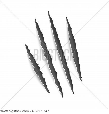 Marks Claw. Scratches Realistic Claws, Cat And Tiger, Wild Lion And Bear Animals Paws Attack Tracks.