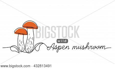 Aspen Wild Mushroom Simple Vector Line Illustration. One Line Art Drawing With Lettering Aspen Mushr