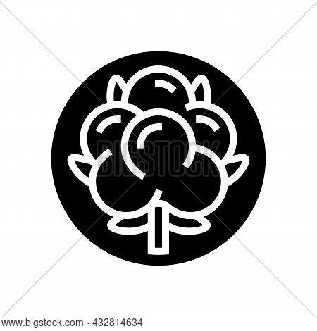 Cotton Clothing Washing Glyph Icon Vector. Cotton Clothing Washing Sign. Isolated Contour Symbol Bla