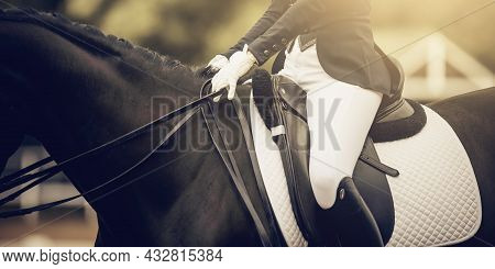 A Rider's Hand In A White Glove With A Rein. Equestrian Sport. Dressage Of Horses In The Arena. Dres