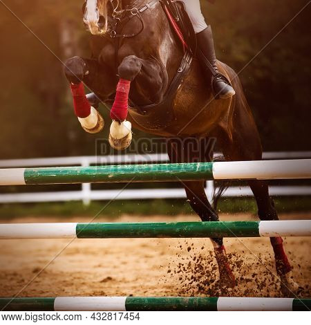 A Strong Bay Racehorse With A Rider In The Saddle Jumps Over The Green Barrier At A Show Jumping Com