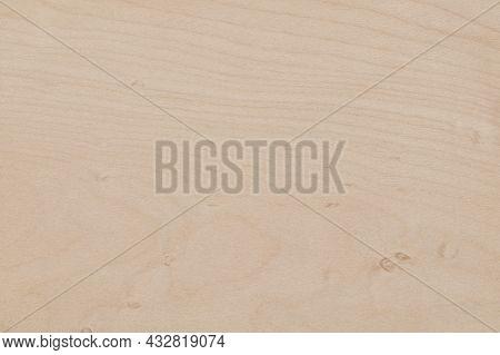 Texture Of  Bright  Beige Sycamore Wood Veneer