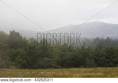 View Of A Hills And Mountains From A Observatory In Dense Fog. Dense Coniferous Forest.
