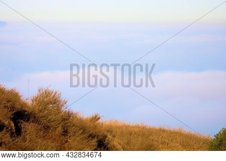Rural Hills Covered With Chaparral Shrubs And Grasslands Overlooking Stratus Clouds And Fog Known Lo