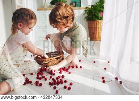 Cute Redhead Kids, Siblings Helping Each Other To Collect Cherries Scattered On The Floor At The Kit