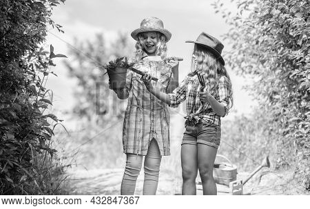 Eco Farming Concept. Girls With Gardening Tools. Sisters Helping At Farm. On Way To Family Farm. Agr