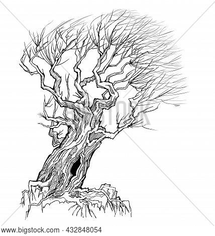 Fantasy Illustration Of Old Tree Resisting The Wind. Autumn Landscape With Willow Tree Silhouette. P