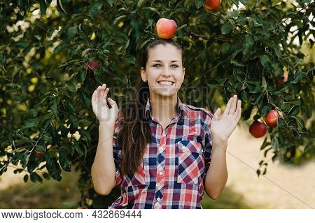 Teenage Girl Picking Ripe Organic Apples On Farm At Fall Day. Person With Fruit In Basket. Harvest C