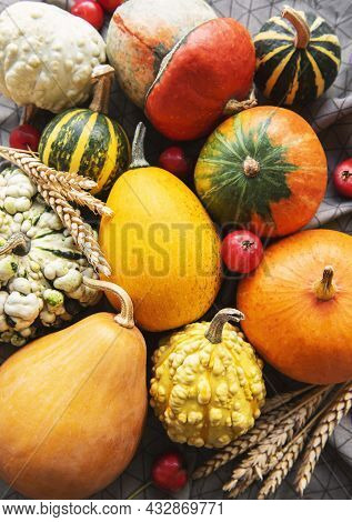 Autumn Composition,  Cozy Fall Season,  Pumpkins And Leaves On Textile Background.