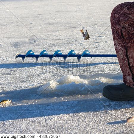 Winter Fishing On The Ice Of A River Or Lake. A Fisherman Catches A Fish In A Hole In The Ice.