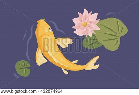 Japanese Koi Fish Swimming In Pond In Asian Water Garden. Decorative Peaceful Carp And Lotus Flower