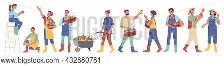 Set Of People Gathering Harvest Of Apples Isolated Flat Cartoon Characters. Vector Man And Woman Wit