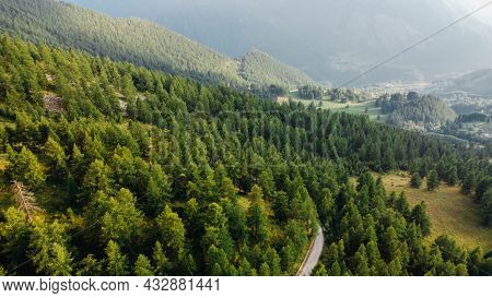 Aerial View Of Green Fields And Coniferous Forest.