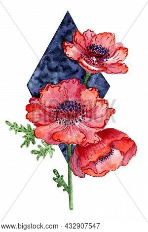 Red Anemones Flowers. Poppy Flowers Watercolor Illustration. Flowers For A Greeting Card. Congratula