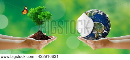 Tree With Butterfly And Earth Wearing A Surgeon Mask For Corona Virus Or Covid-19 Protection. On Gre